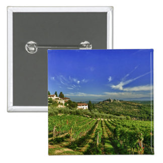 Italy, Tuscany, Greve. The vineyards of Castello Pinback Button