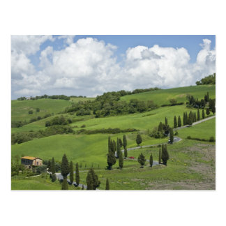 Italy, Tuscany. La Foce. A curved road winds up Postcard