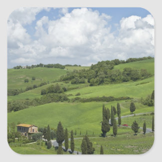 Italy, Tuscany. La Foce. A curved road winds up Square Sticker