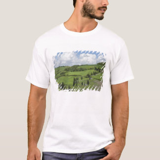 Italy, Tuscany. La Foce. A curved road winds up T-Shirt