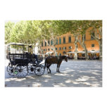 Italy, Tuscany, Lucca, Barouche on the Piazza Photo Print