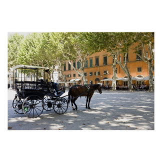 Italy, Tuscany, Lucca, Barouche on the Piazza Poster