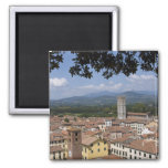 Italy, Tuscany, Lucca, View of the town and 4 2 Inch Square Magnet