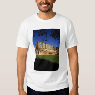 Italy: Tuscany, Massa Marittima, San Galgano T-Shirt