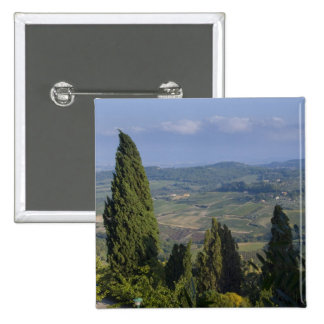 Italy, Tuscany, Montepulciano. View of the Pins