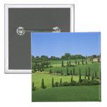 Italy, Tuscany, Multepulciano. Cypress trees Pinback Button