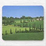 Italy, Tuscany, Multepulciano. Cypress trees Mouse Pad