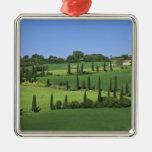 Italy, Tuscany, Multepulciano. Cypress trees Square Metal Christmas Ornament