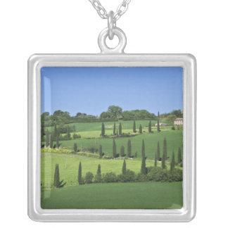 Italy, Tuscany, Multepulciano. Cypress trees Square Pendant Necklace