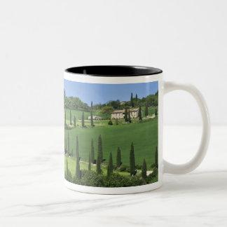 Italy, Tuscany, Multepulciano. Cypress trees Two-Tone Coffee Mug