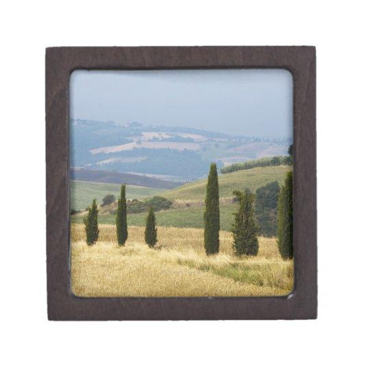 Italy. Tuscany. Pienza. Keepsake Box