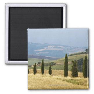 Italy. Tuscany. Pienza. Magnet