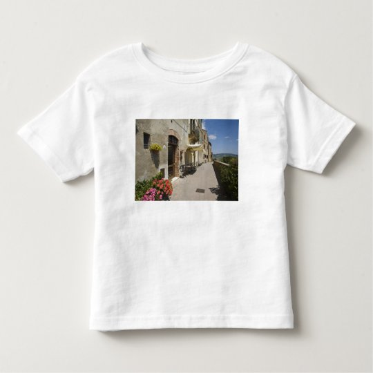 Italy, Tuscany, Pienza. Outer walkway around Toddler T-shirt