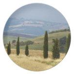 Italy. Tuscany. Pienza. Plates