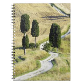 Italy, Tuscany, Pienza, Val d'Orcia, Cypress Notebook