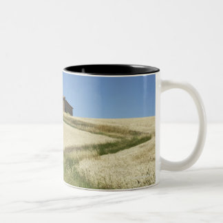 Italy, Tuscany, Pienza, Val d'Orcia, Wheat field Two-Tone Coffee Mug