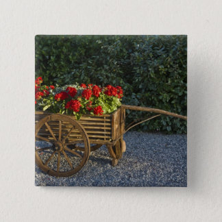Italy, Tuscany. Red geraniums spill out of an Button