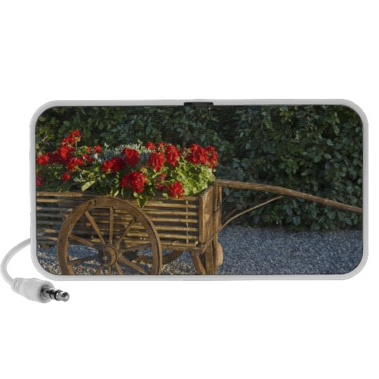 Italy, Tuscany. Red geraniums spill out of an Mini Speaker