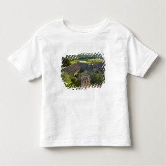 Italy, Tuscany. Roofop view of the villa Toddler T-shirt