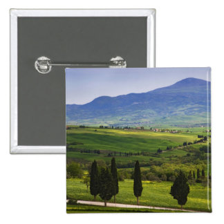 Italy, Tuscany. Scenic of the Tuscan Buttons
