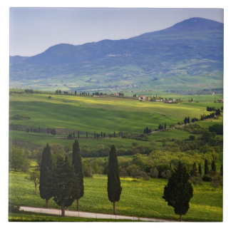 Italy, Tuscany. Scenic of the Tuscan Tile