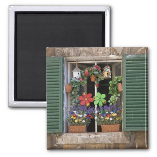 Italy, Tuscany, Siena, Window of a house in 2 Inch Square Magnet