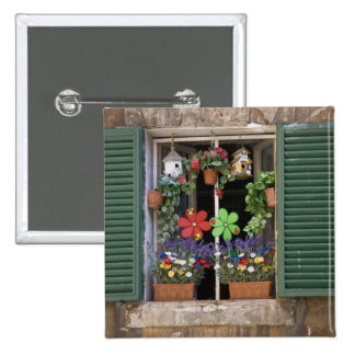 Italy, Tuscany, Siena, Window of a house in Pins
