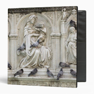 Italy, Tuscany, Sienna. Statues and birds on Vinyl Binders