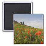 Italy, Tuscany, Tuscan Villa in Spring With 2 Inch Square Magnet