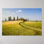 Italy, Tuscany, Tuscan Villa nearing Harvest. Poster