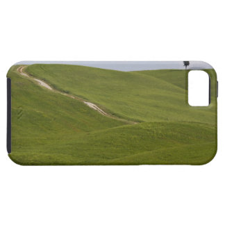 Italy, Tuscany, Val D'Orcia, Landscape 3 iPhone 5 Case