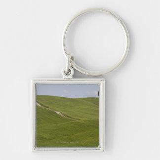 Italy, Tuscany, Val D'Orcia, Landscape 3 Keychain
