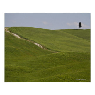 Italy, Tuscany, Val D'Orcia, Landscape 3 Poster