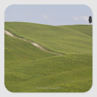 Italy, Tuscany, Val D'Orcia, Landscape 3 Square Sticker