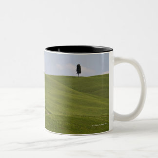 Italy, Tuscany, Val D'Orcia, Landscape 3 Two-Tone Coffee Mug