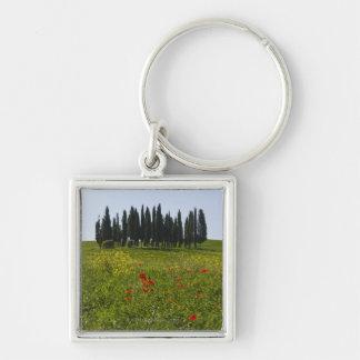 Italy, Tuscany, Val D'Orcia, Landscape Keychain