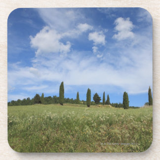 Italy, Tuscany, Val D'Orcia, Landscape with Beverage Coasters