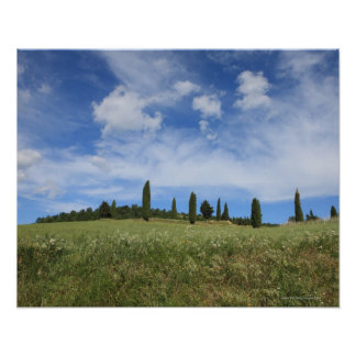 Italy, Tuscany, Val D'Orcia, Landscape with Poster