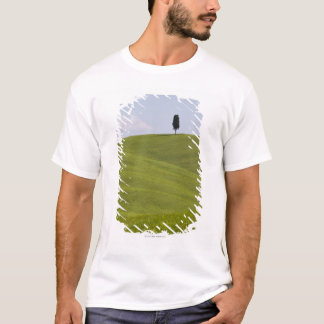 Italy, Tuscany, Val D'Orcia, Lone tree on hill T-Shirt