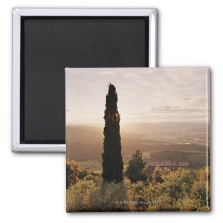 Italy,Tuscany,Val d'Orcia,Montalcino Magnet