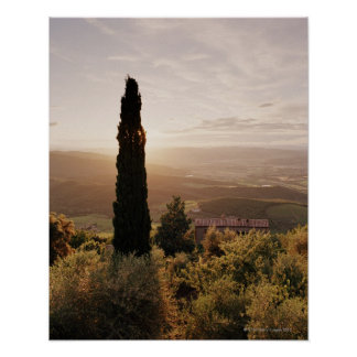 Italy,Tuscany,Val d'Orcia,Montalcino Poster