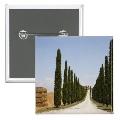 Italy. Tuscany. Val D'Orcia (Orcia Valley) 3 Pinback Buttons
