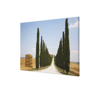 Italy. Tuscany. Val D'Orcia (Orcia Valley) 3 Canvas Print