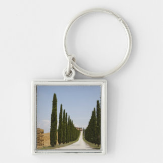 Italy. Tuscany. Val D'Orcia (Orcia Valley) 3 Keychain