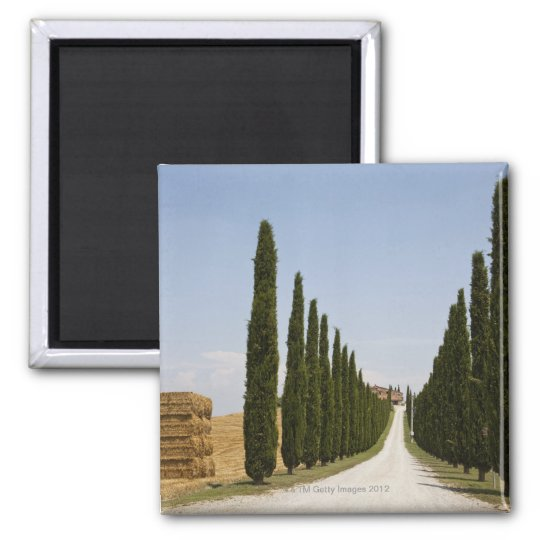 Italy. Tuscany. Val D'Orcia (Orcia Valley) 3 Magnet