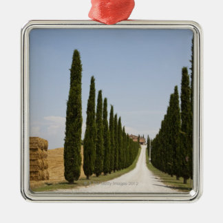 Italy. Tuscany. Val D'Orcia (Orcia Valley) 3 Metal Ornament
