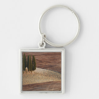 Italy,Tuscany,Val d'Orcia,San Quirico d'Orcia Keychain