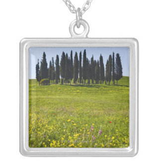 Italy, Tuscany, Val D'Orcia, Trees on meadow Silver Plated Necklace