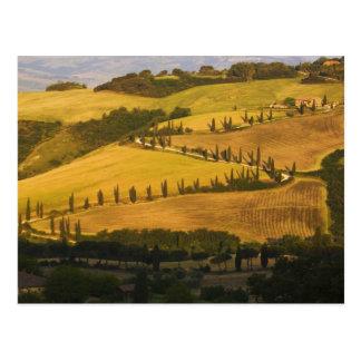 Italy, Tuscany, ZigZag Road in Tuscany. Postcard