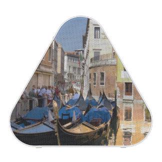 Italy, Venice, gondolas moored along canal Speaker